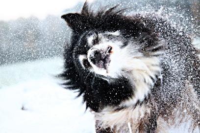 snow-1811877_1920